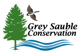 Grey Sauble Conservation Cancels 2020 Summer Day Camp