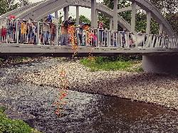 17th Annual Lions Duck Race